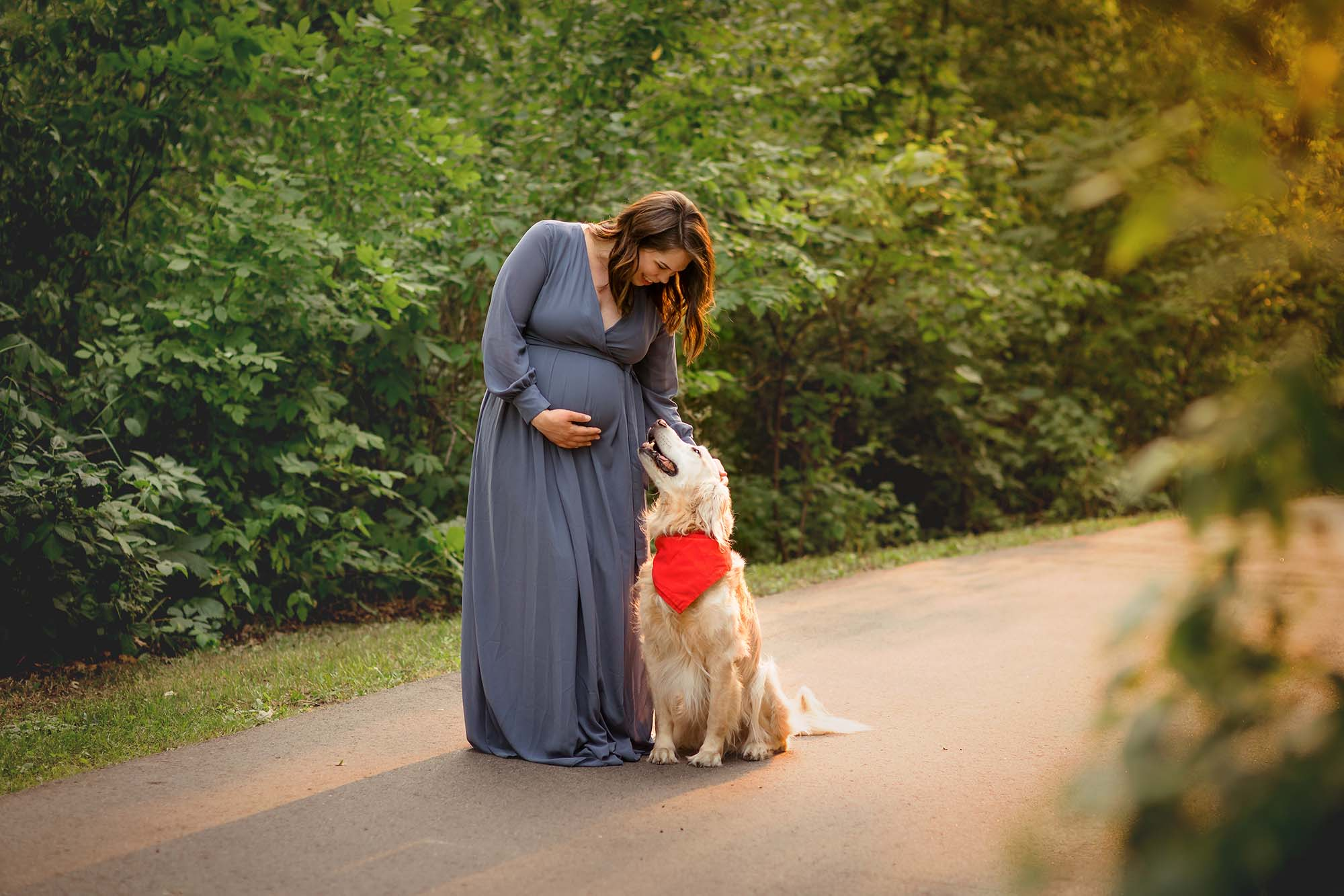 evening backlit pregnancy photos with dog maple grove mn
