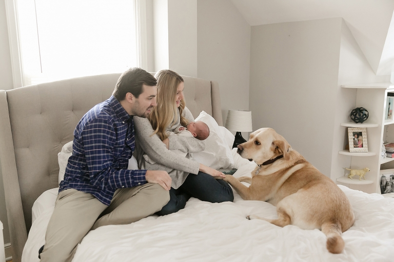 newborn and pet photography minneapolis