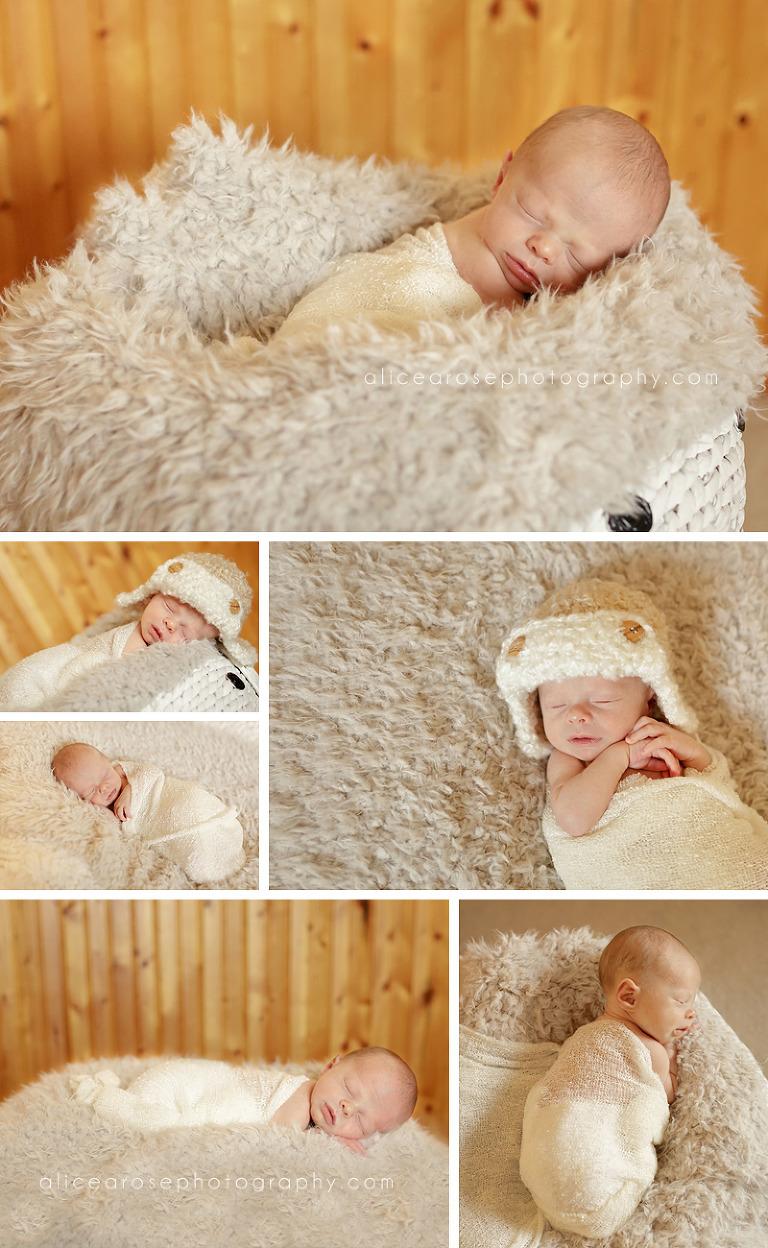 maple grove newborn photographer1