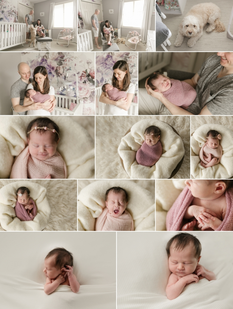 beautiful newborn photography minneapolis mn